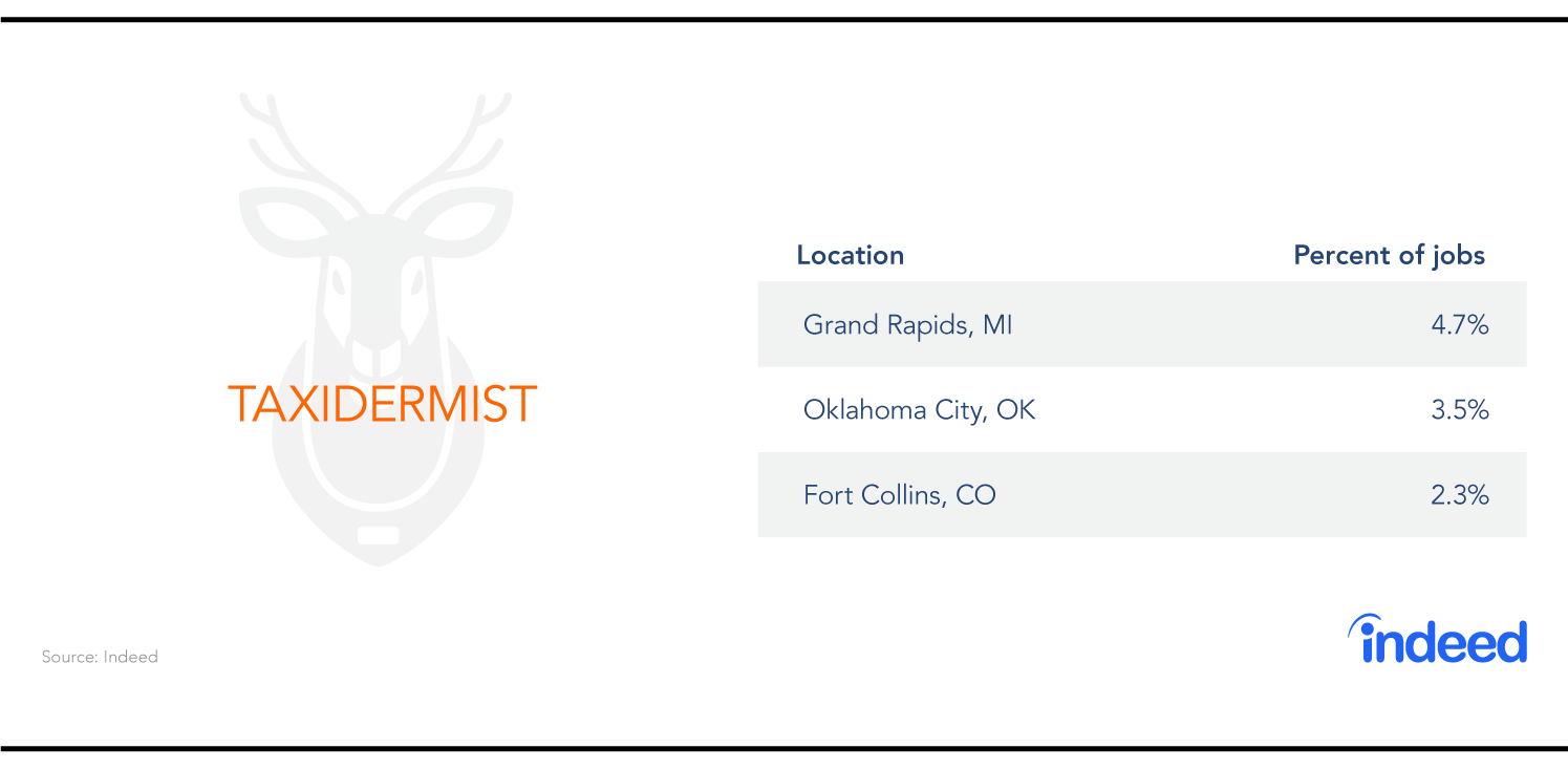 The three cities with the most taxidermist jobs are Grand Rapids, Oklahoma City and Fort Collins.